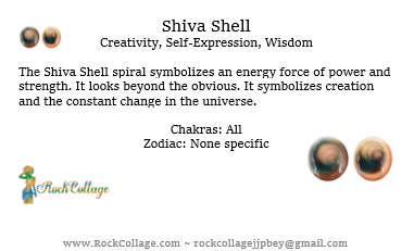 Collage Stone: Shiva Shell