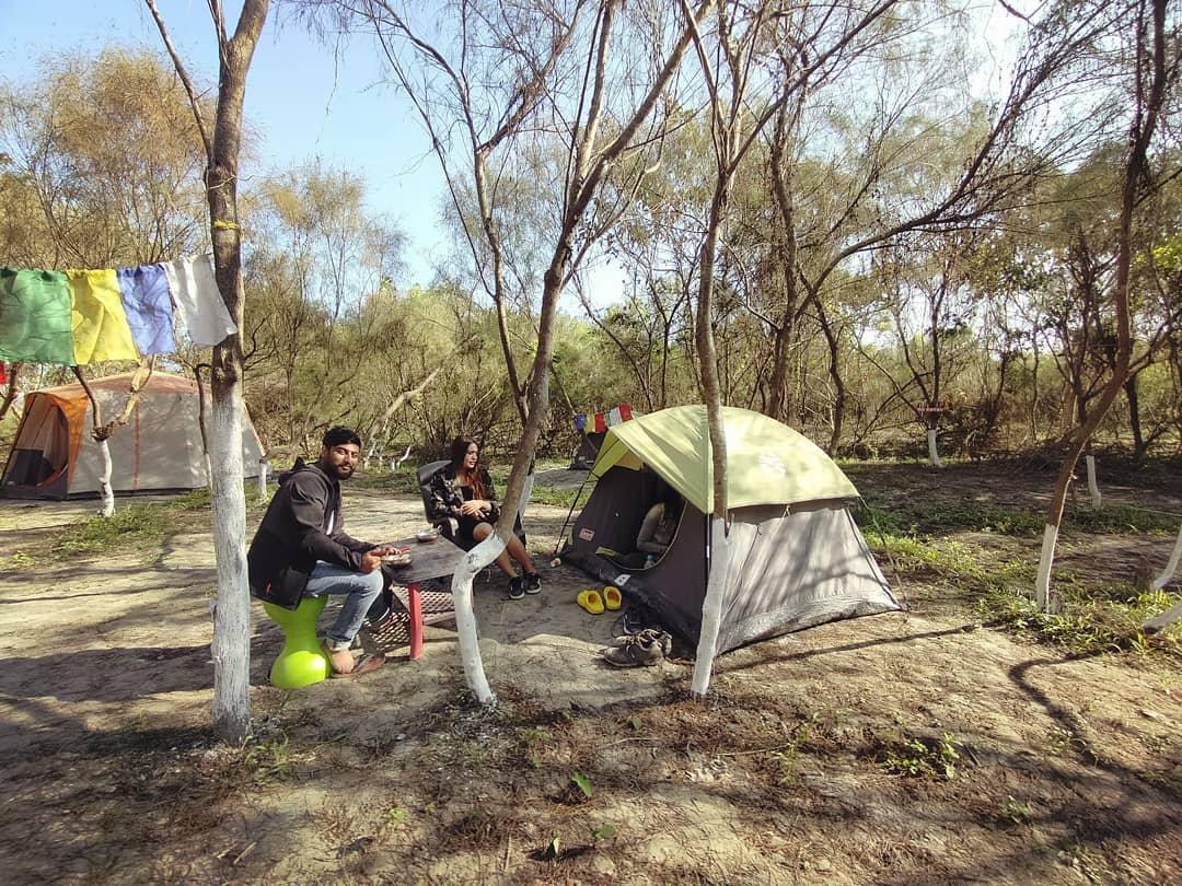 Ugroshore Deluxe Night Camping