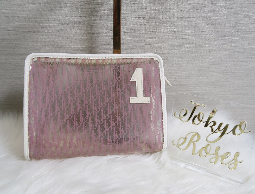 Christian Dior Pink Trotter Clutch Purse Clear Vinyl