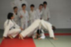 centro la fenice, arti marziali, karate, brasilian jiu jitzu, Modena, errenord, canaletto
