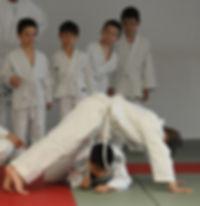 Judo, arti marziali, centro la fenice, Modena, Ki aikido