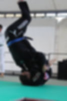 Brazilian jiu jitsu, Arti Marziali, Centro la fenice, Modena