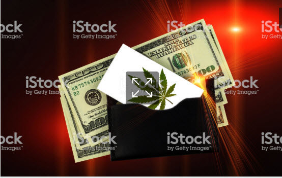 Cash and Marijuana Leaf test.jpg