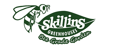 Skillins-Bee-Logo_1244x500.png