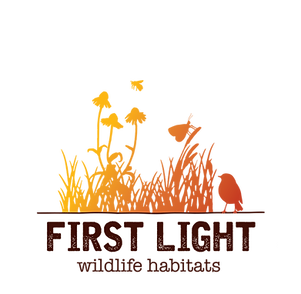 First Light Color Logo.png