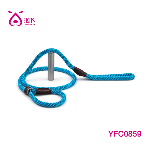 Neon Blue Rope Slip Leash