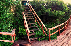 Stairs up to the Green Cabin