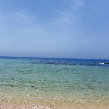 שרה גילאון - חוף קיסריה