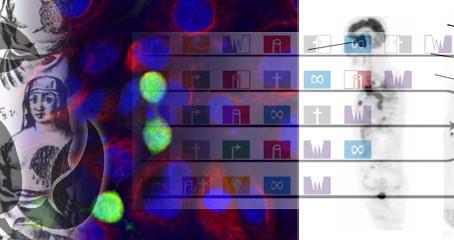 Precision Oncology Needs Neoadjuvant Clinical Trials like I-SPY2