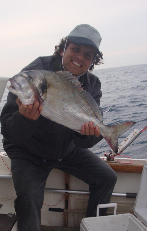 una splendida orata FEMMINA catturata innescando un piccolo trancio di sardina