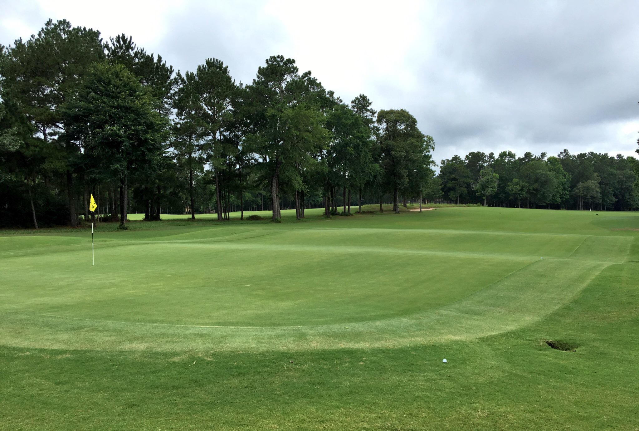 High Meadow Ranch #14