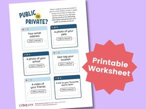 Public or Private? (Printable Worksheet)