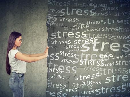 START Guide : Stresseurs et stress : ce que la science en dit et comment faire face ?