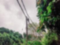 Elektriliinid millel ahvid kõõlusid ja mille all kõndides võib saarel ise mõnusalt matkata