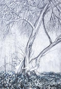 study of trees 2