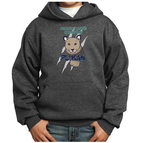 Paradise Canyon Hoodie (Youth & Adult)