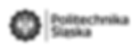 politechnika_sl_logo_bw_poziom_pl_rgb.pn