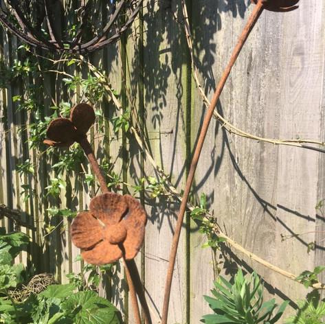 Poppy Plant Support