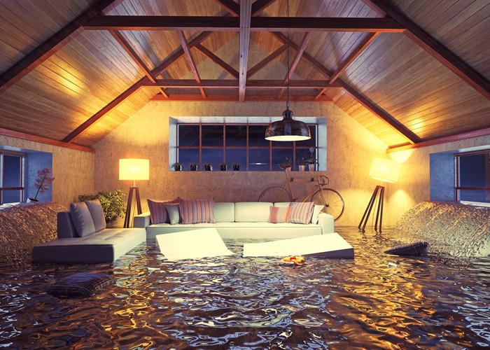 livingroomFlood.jpg
