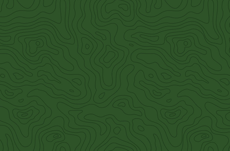 Topography_green_rgb.jpg