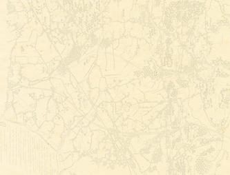 Thatchers_Background_Map_CMYK_Flat-01-%2