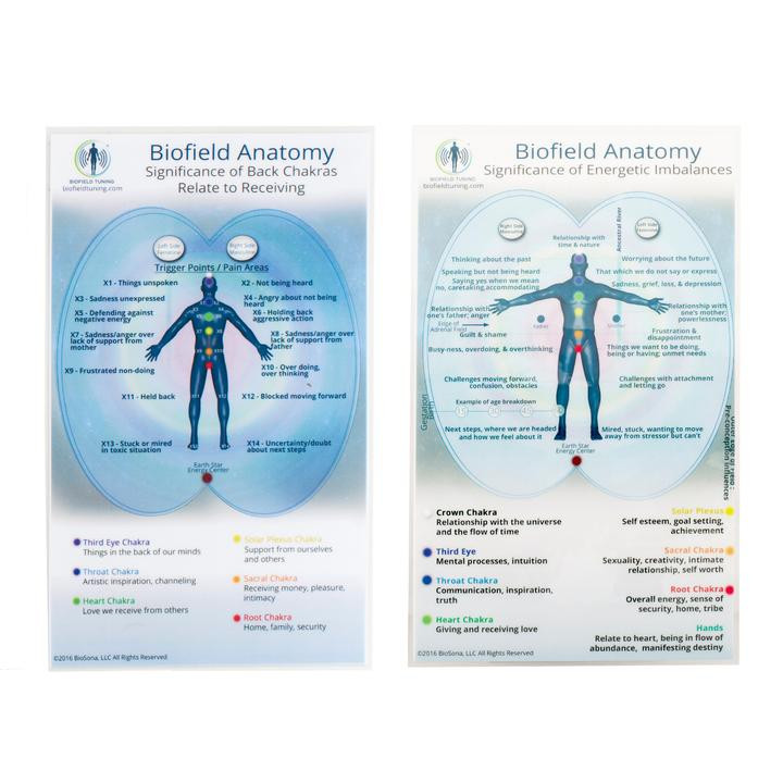 Biofield Anatomy Map