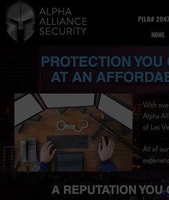 alpha alliance security.jpg