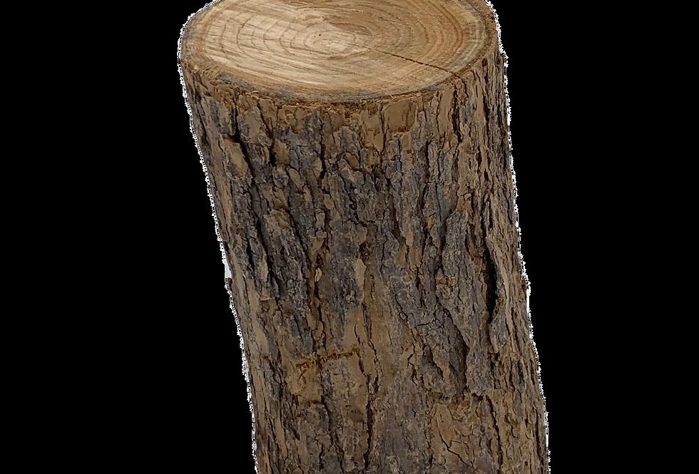 Tree Stump, Various Sizes