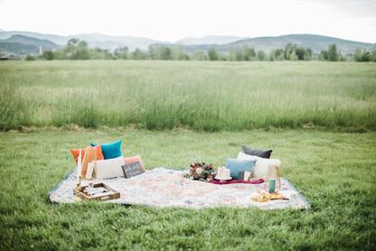 wedding outdoor decor picnic.jpg