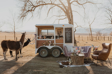 Sarah Kemper Photo Country Western Chic