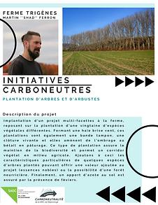 Plantation arbres et arbustes ferme trigènes carbo