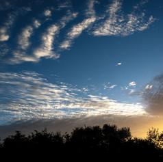 Rising-Sun_10A-W.jpg