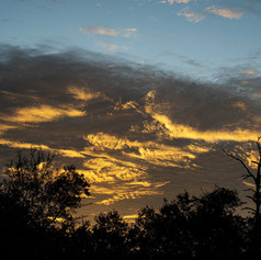 Rising-Sun_07A-W.jpg