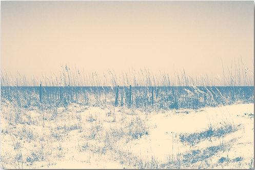 Dune Horizon