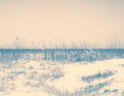 Dune Horizon 2B DT