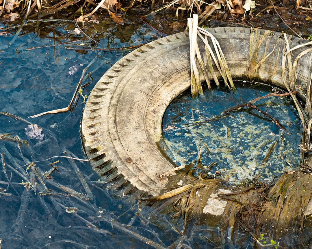 Polluted Stream
