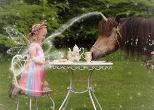 Unicorn Tea Party Mini