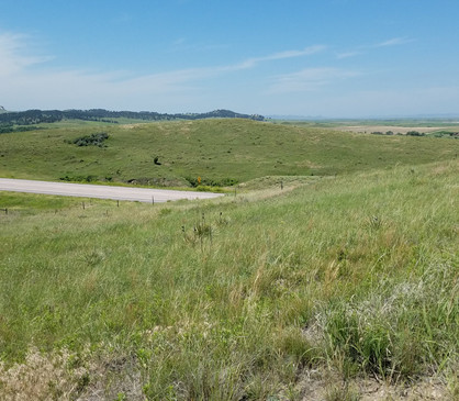 16412 South Hwy 385 - West View - July20