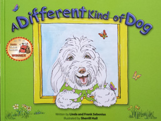 A Different Kind of Dog - Take it to the beach with the kids for summer reading!