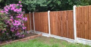 Ultimate Guide for Choosing the Right Garden Fence