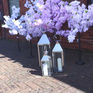 Blossom Trees with Lanterns