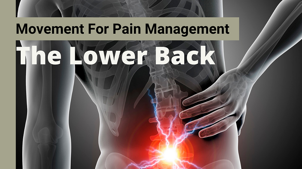 Movement for Pain Management: The Lower Back