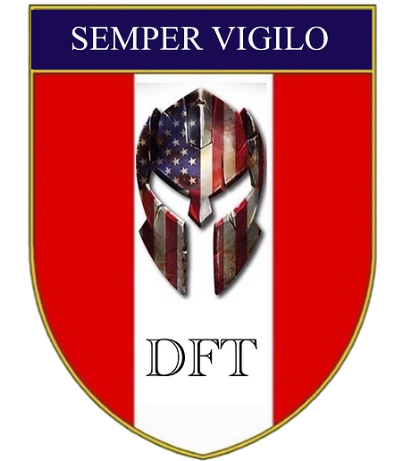 DFT Crest - Semper Vigilo 12 09 2020.png