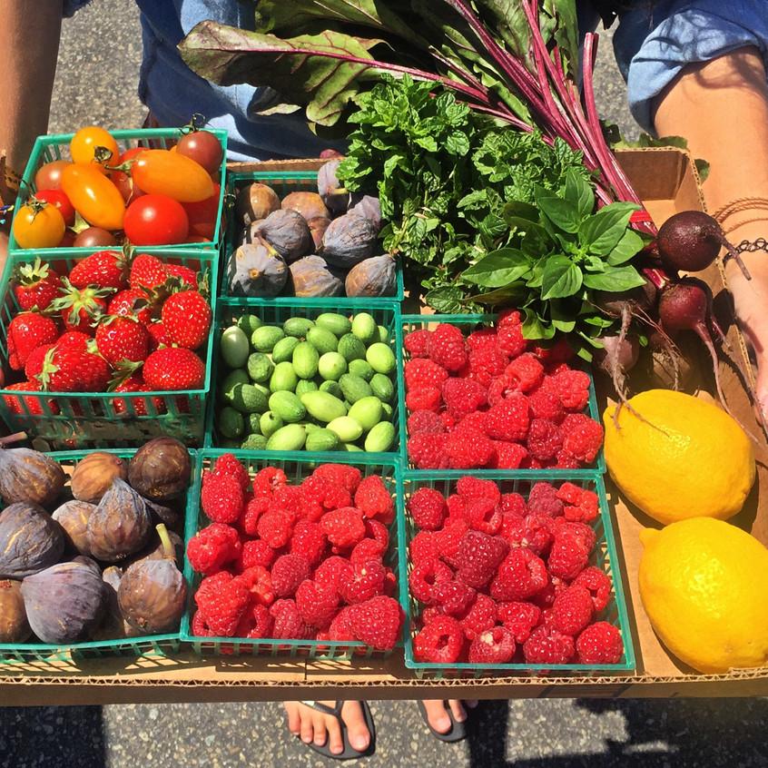 Fresh produce in Del Mar