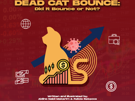 Dead Cat Bounce: Did it Bounce or Not?