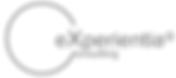 experientia egitim danismanlik logo.png