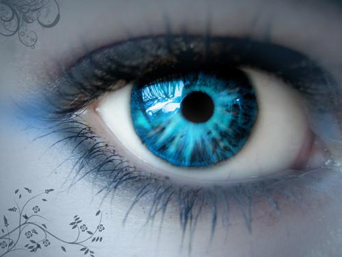 Eye-eyes-19801145-500-375.jpg