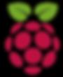 raspberry-pi-logo-8240ABBDFE-seeklogo.co