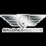 salon_limo_logo1.png