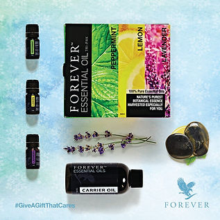 forever-essential-oils-christmas-gift-al